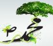 Green_Islam_mohammad