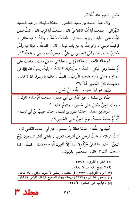 Siyar-Ahlam-NobalaVol3-blz316.jpg